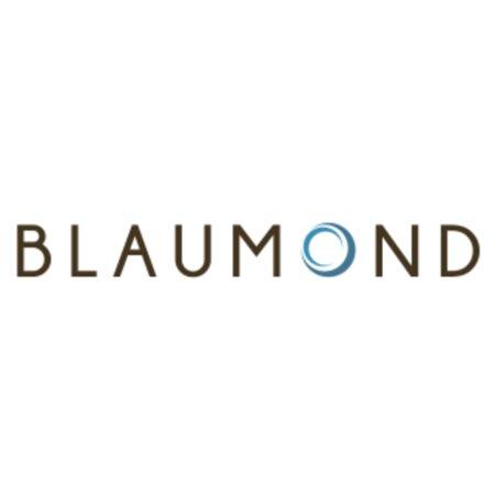 Blaumond GmbH - Dresden | JobSuite